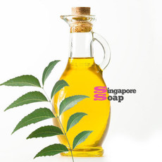 Neem Oil (100% Pure & Cold Pressed) in Singapore
