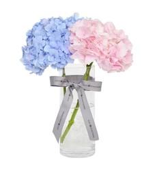 Mixed Hydrangeas with Vase