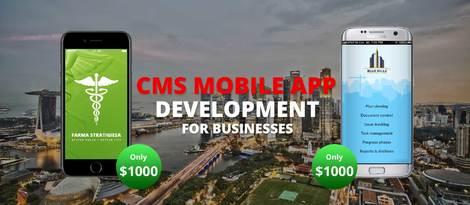 Cheap Mobile App Design Singapore