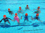SG Swimming Classes