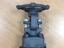 Reduced Bore Forged Gate Valve, NPT, 800#